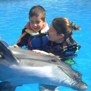 海豚疗法真能治疗孤独症,还只是个传说?
