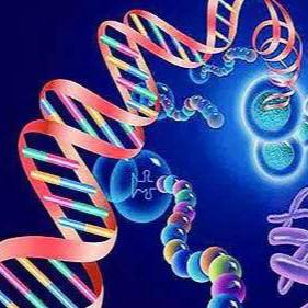 自闭症病因研究新发现:可能5%源于基因隐性突变