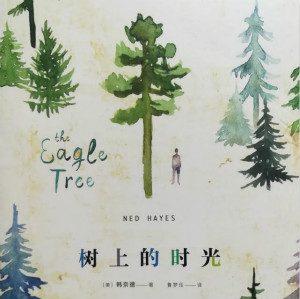 环保主题的自闭症小说《树上的时光》