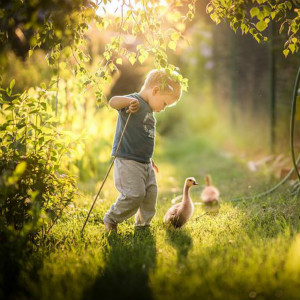 自闭症儿童IEP计划如何制定