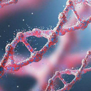 自闭症基因突变的原因和类型