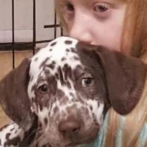 小偷用无人机偷走自闭症治疗犬,英国女孩每晚哭着入眠