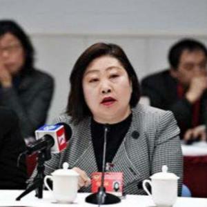 政协委员黄琦建议试行自闭症儿童康复协调员制度